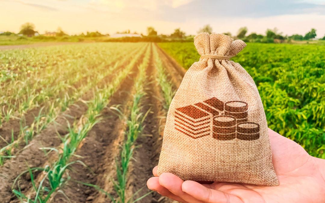 Detalles del régimen laboral y tributario del sector agrario