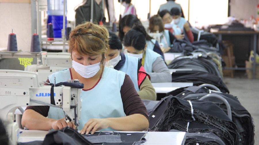 Cómo acceder al subsidio para recuperar el empleo formal